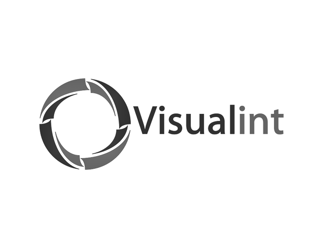 Visualint